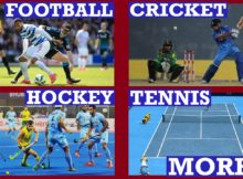 Top 10 Most Famous Sports in the World