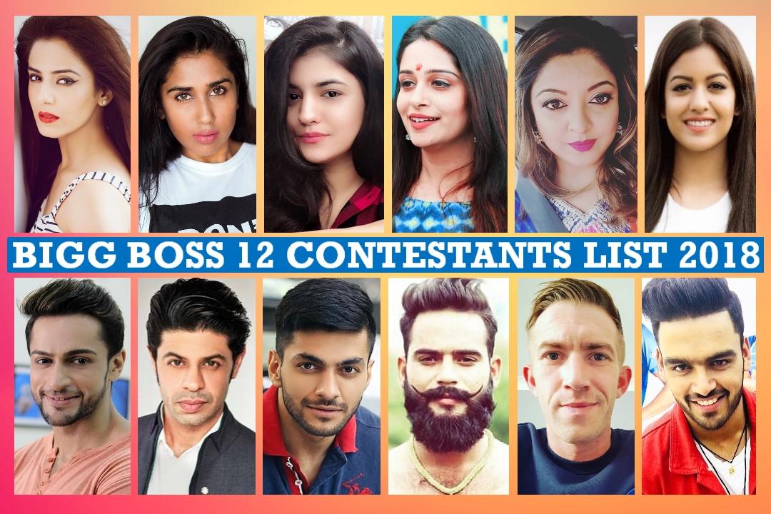 Bigg Boss 12 Contestants List 2018 with Photos