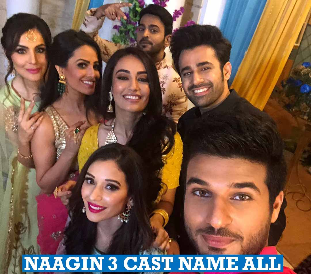 Naagin 3 Cast Name All
