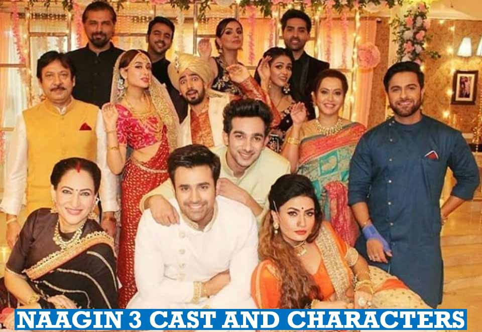 Naagin 3 Cast and Characters