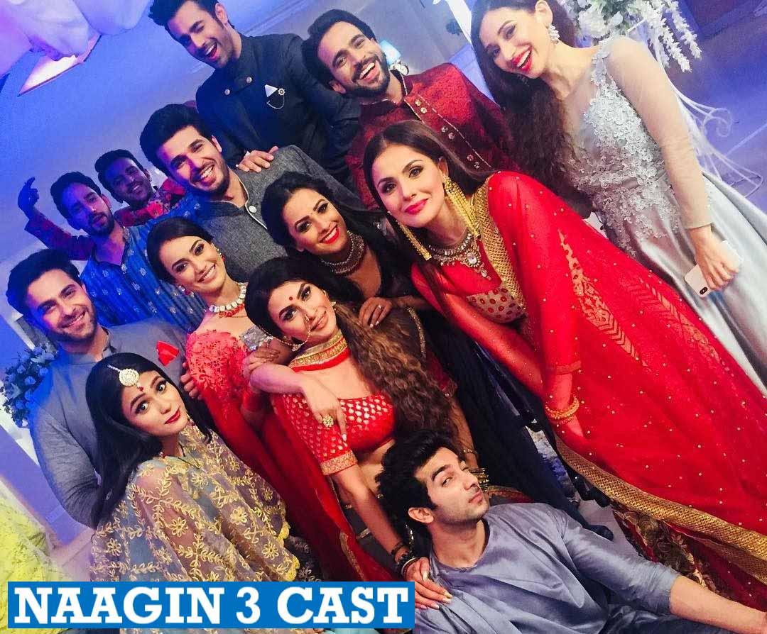 Naagin 3 Cast