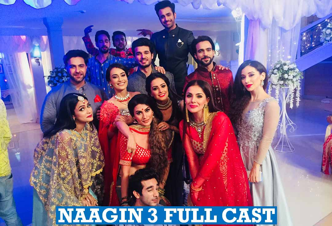 Naagin 3 Full Cast