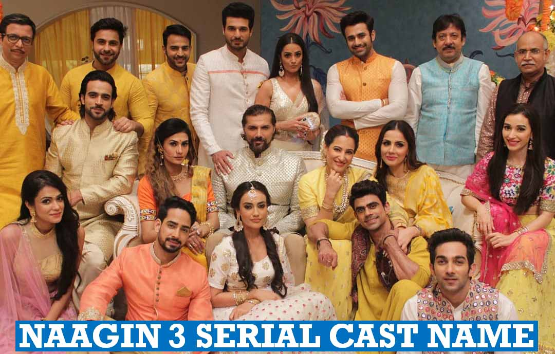 Naagin 3 Serial Cast Name
