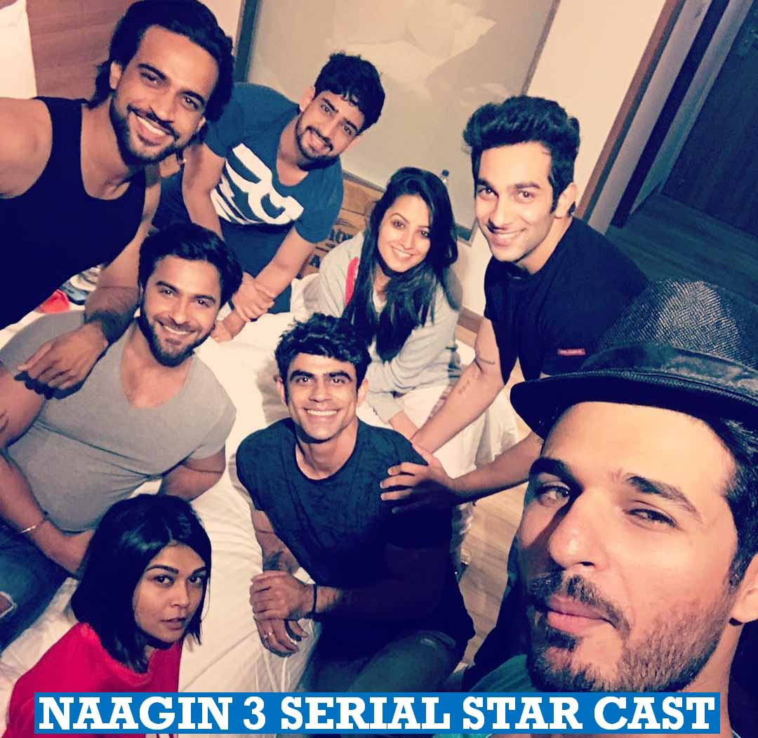 Naagin 3 Serial Star Cast