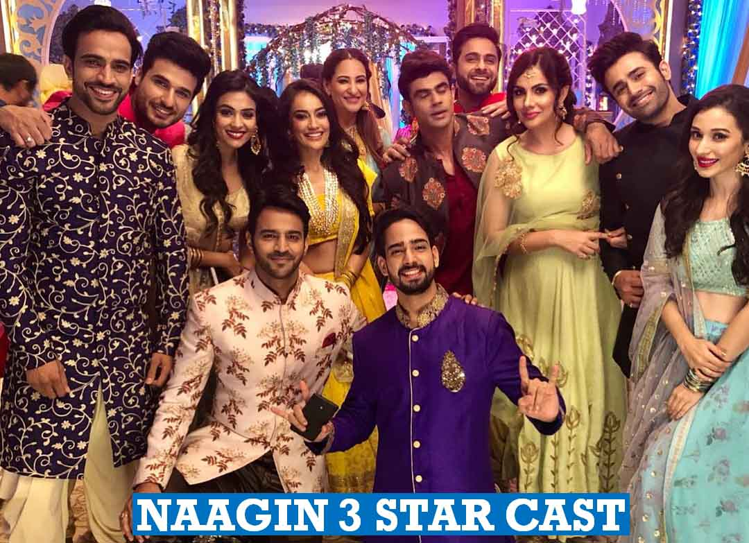 Naagin 3 Star Cast
