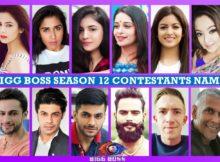 Bigg Boss Season 12 Contestants Name List, Real Life, Biography, Wiki