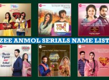 Zee Anmol Serials Name List, Detail Information, Wiki, Zee Anmol Television Show