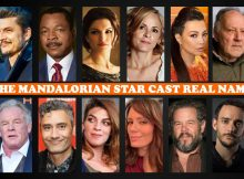 The Mandalorian Star Cast Real Name, Disney+ TV Series, Crew Members, Story Plot, Genre, Timing, Pictures, Wiki, IMDb, Schedule