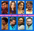 Panchayat Star Cast Real Name, Amazon Web Series, Stars, Actors, Actresses